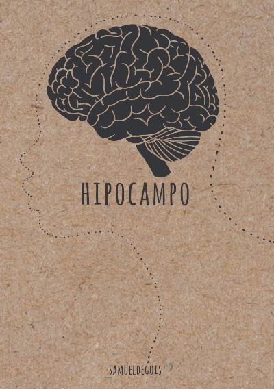 hipocampo.jpg